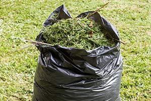 Garden waste removed